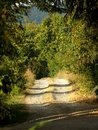 Free Countryside Path Royalty Free Stock Photography - 6315847
