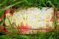 Free Danger Danger!!! Royalty Free Stock Photography - 6316477