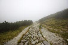 Free Misty Pathway Stock Image - 6311911