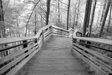 Free The Long Walk Royalty Free Stock Images - 6312079