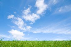 Free Green Grass, Blue Sky Stock Photography - 6315802