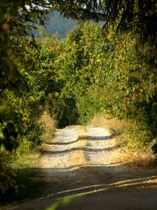 Countryside Path Royalty Free Stock Photography