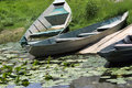 Free Old Abandoned  Boats In The Rank Pond Royalty Free Stock Images - 6329289