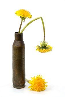 Free Flowers In Cartridge-case Stock Photo - 6320560