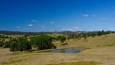 Free Farm Dam With Trees Royalty Free Stock Images - 6321099