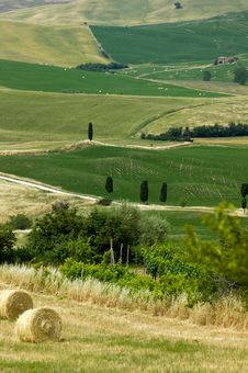 TUSCANY Countryside With Farms And Hay-ball Stock Photography