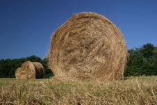 Free Idyllic Field With Hay Bales In Late Summer Royalty Free Stock Images - 6321549