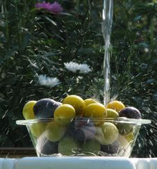 Free Plums Under Water Stream Royalty Free Stock Photography - 6321597