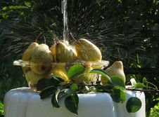 Free Pears Under Water Stream Stock Photo - 6321690