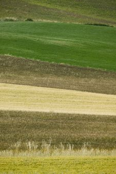 Free TUSCANY Countryside Stock Photography - 6321692
