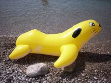 Free Child S Inflatable Swimming Toy Stock Photos - 6321903