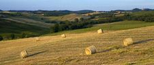 Free TUSCANY Countryside, Hay-balls On The Meadow Stock Photography - 6321922