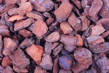 Free Pine Tree Barks Stock Image - 6322561