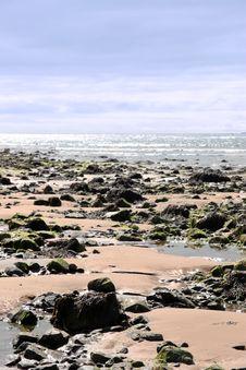Free Beale Beach 7 Royalty Free Stock Image - 6323076