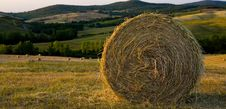 Free TUSCANY Countryside With Hay-balls Royalty Free Stock Photo - 6323795