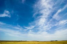 Free Summer Landscape Royalty Free Stock Images - 6324109