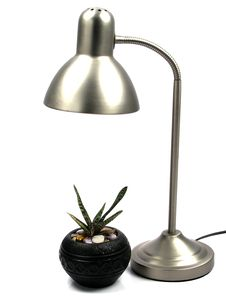 Lamp And Plant Royalty Free Stock Photos