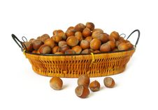 Free Wood Nuts On White Stock Photos - 6326903
