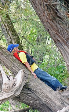 Free Boy In Willow Tree Royalty Free Stock Image - 6327816