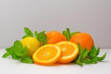 Free Citrus Stock Photos - 6329113
