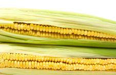 Two Yellow Corns Royalty Free Stock Photo