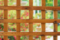 Free Wood Lattice Royalty Free Stock Photos - 6330818