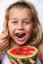 Free Summer Fruits Stock Images - 6334764