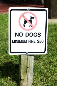 Free No Dogs Sign Royalty Free Stock Images - 6330249
