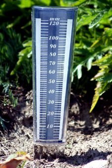Free Humidity In The Soil Royalty Free Stock Image - 6332306