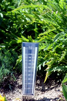 Free Humidity In The Soil Stock Photo - 6332340