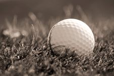 Free Golfball In Grass Stock Photos - 6332343
