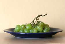 Free Grape-vine On A Plate Stock Image - 6333211
