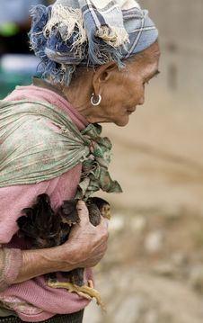 Free Asia, Old Woman With Chicken Stock Images - 6333684