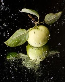 Free Fresh Apple On A Mirror Surface Stock Photo - 6335590