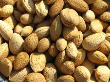 Free Almond Background Stock Photos - 6335703