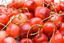 Free Fresh Cherry Stock Photos - 6335713