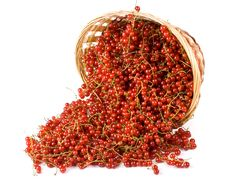 Free Red Currant Stock Photo - 6335740