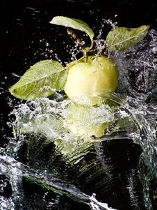 Free Fresh Apple On A Mirror Surface Royalty Free Stock Photography - 6337197