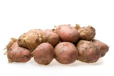 Free Fresh Potato Royalty Free Stock Photos - 6337238
