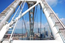 Free Singapore Flyer Stock Photos - 6337543