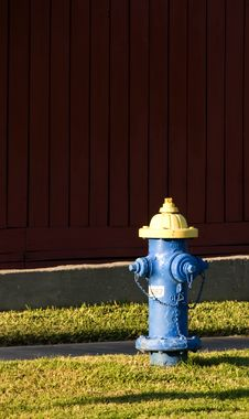 Free Blue And Yellow Hydrant Stock Photo - 6338030