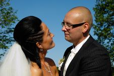 Free Wedding Couple Stock Photography - 6338382
