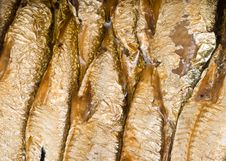 Free Can With Sprats Stock Photos - 6338913