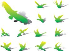 Set Icons - 13A. Birds Royalty Free Stock Images