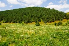 Free Countryside In Ukraine Stock Photo - 6340090