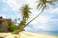 Free Tropic Hut Royalty Free Stock Images - 6341529