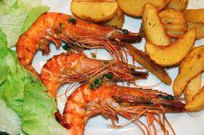 Free Jumbo Shrimps Stock Photos - 6343333