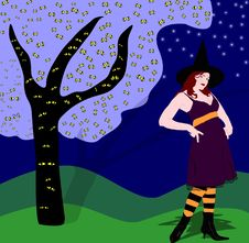 Free Witch Stock Images - 6343434