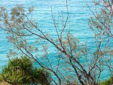 Free Ocean Stock Photo - 6344020