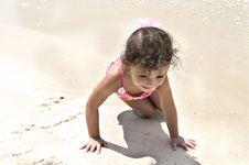 Free Beach Crawling Stock Image - 6344261